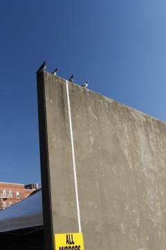 Brooklyn Flea. Fort Greene, Brooklyn